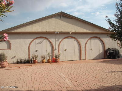 Tucson Single Family Home For Sale: 8402 W Calle Sancho Panza