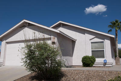 Tucson Single Family Home For Sale: 2475 S Iman Avenue