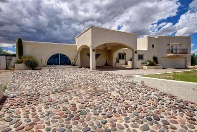 Tucson Single Family Home For Sale: 3686 W Hills Of Gold Drive
