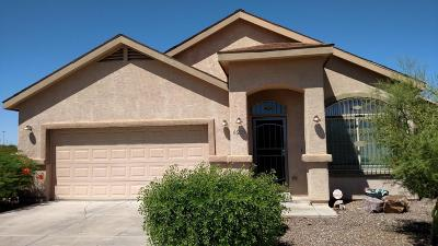 Tucson Single Family Home For Sale: 6206 S Water Fountain Drive