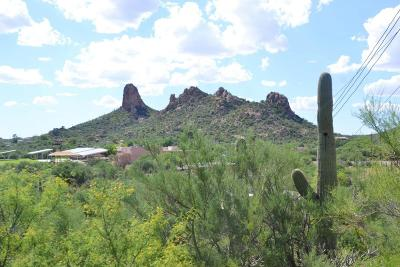 Tucson Residential Lots & Land For Sale: 5875 S Camino De La Tierra