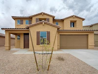 Marana Single Family Home For Sale: 12465 N Willowvale Drive N