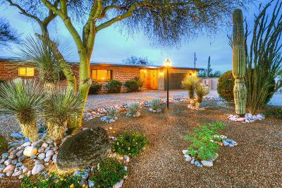 Tucson Single Family Home For Sale: 5262 N Genematas Drive