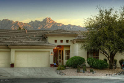 Tucson Single Family Home For Sale: 9689 E Waters Edge Place