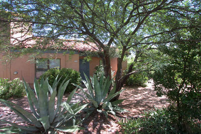 Tucson Single Family Home For Sale: 5316 N Paseo De La Terraza