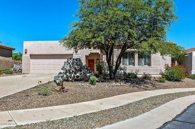 Tucson Single Family Home For Sale: 4140 W Winter Wash Drive