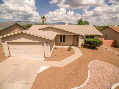Tucson Single Family Home For Sale: 7631 S Falster Avenue