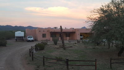 Tucson Single Family Home For Sale: 1400 N Sandario Road
