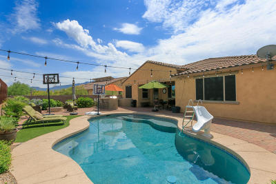 Oro Valley Single Family Home For Sale: 343 E Honey Bee Preserve Way