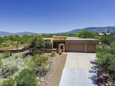 Tucson Single Family Home For Sale: 1351 S Placita Brisa Serena