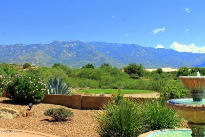 Tucson Single Family Home For Sale: 62383 E Iron Crest Drive