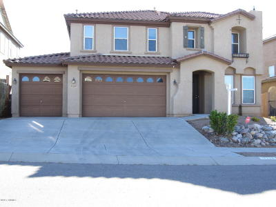 Vail Single Family Home For Sale: 17220 S Painted Vistas Way