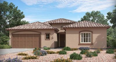 Marana Single Family Home For Sale: 6693 W Red Hawk Place