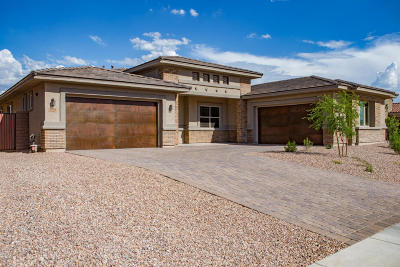 Tucson Single Family Home For Sale: 13454 N Trailing Indigo Court