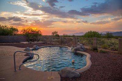 Tucson, Oro Valley, Marana, Sahuarita, Vail Single Family Home Active Contingent: 8935 S Placita Pastura