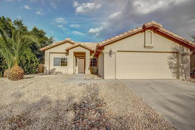 Cortaro Crossing Blks I-Ii (1-119), Cortaro Ranch (1-297), Cortaro Ridge (1-124) Single Family Home For Sale: 9070 N Yellow Moon Drive