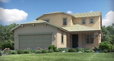 Tucson Single Family Home For Sale: 11435 E Dry Wind Drive E