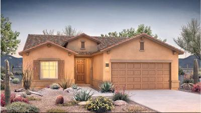 Vail Single Family Home For Sale: 13970 E Via Cerro Del Molino S