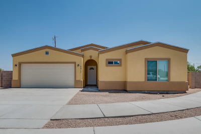 Tucson AZ Single Family Home For Sale: $169,900
