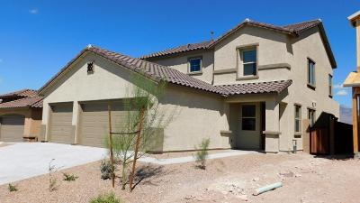 Tucson AZ Single Family Home For Sale: $385,000