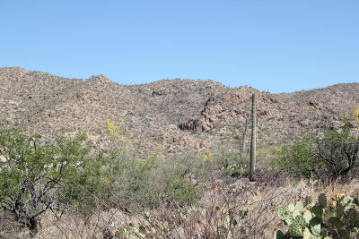 Residential Lots & Land For Sale: 14255 N Gibson Trail