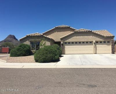 Tucson Single Family Home For Sale: 7865 N Maiden Pools Place