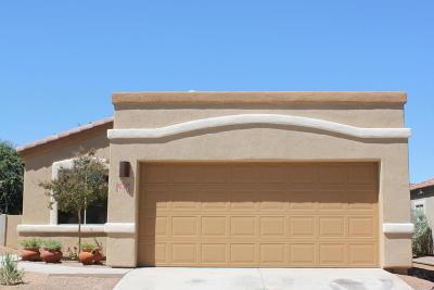 Sahuarita Single Family Home For Sale: 169 E Placita Nubes De Agua