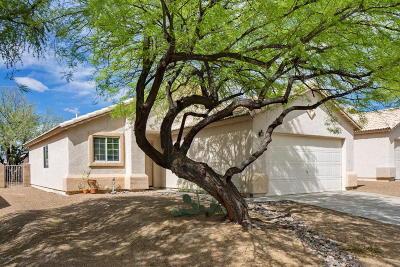 Pima County Single Family Home For Sale: 2058 W Cholla Vista Drive