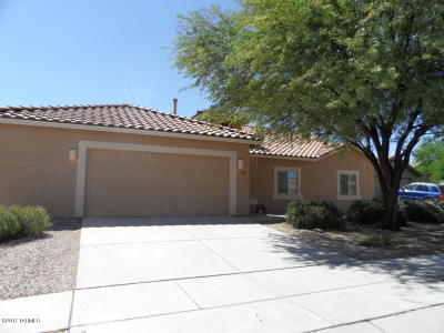 Tucson Single Family Home For Sale: 14851 N Welsh Road