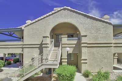 Tucson AZ Single Family Home Active Contingent: $99,900