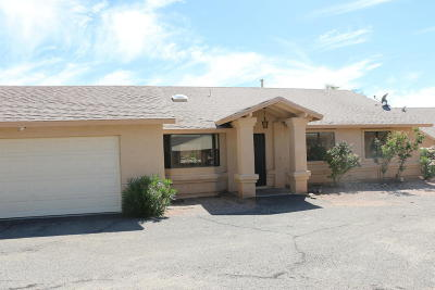 Tucson Single Family Home For Sale: 595 W Lavery