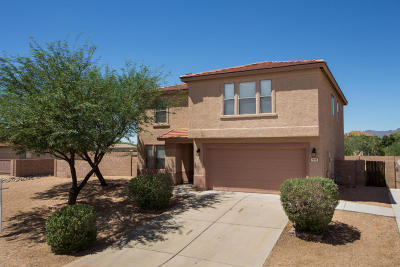 Tucson Single Family Home For Sale: 7068 W Prospect Valley Drive
