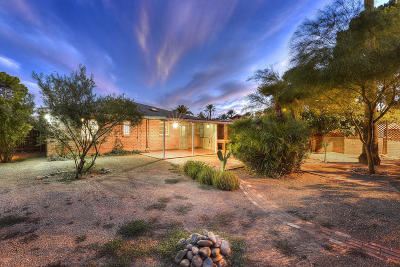 Tucson Single Family Home For Sale: 2617 E Blanton Drive