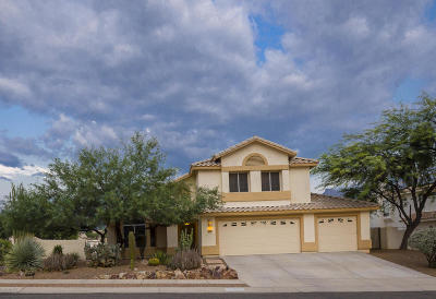 Oro Valley Single Family Home For Sale: 12470 N Granville Canyon Way