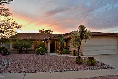 Tucson Single Family Home For Sale: 1500 W Highsmith Drive
