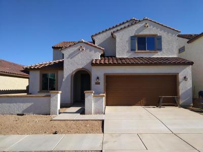 Tucson Single Family Home For Sale: 10917 E Roscommon Street