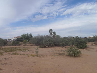 Residential Lots & Land For Sale: 7475 N Avra Road