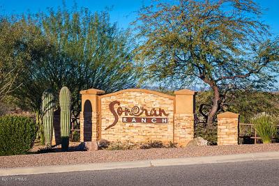 Tucson Single Family Home For Sale: 8309 W Kittiwake Lane W
