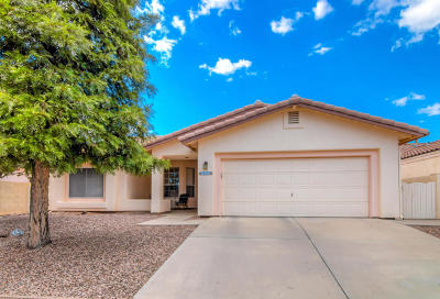 Tucson Single Family Home For Sale: 3384 W Desert Bend Loop