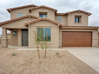 Marana Single Family Home For Sale: 12409 N Willowvale Drive