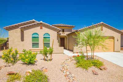 Single Family Home For Sale: 6540 W Whispering Windmill Lane