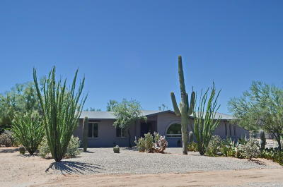 Single Family Home For Sale: 901 W Calle Dadivoso