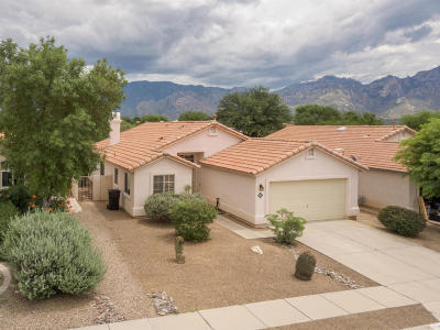 Single Family Home Active Contingent: 12362 N Brightridge Drive