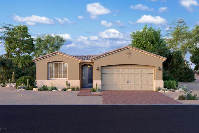 Single Family Home For Sale: 14173 N Golden Barrel Pass