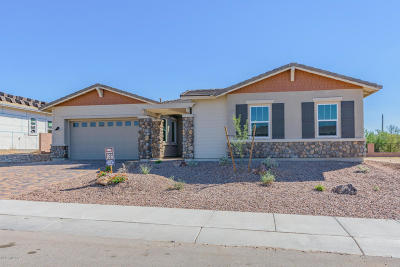 Marana Single Family Home For Sale: 14210 N Hidden Arroyo Ps Pass N