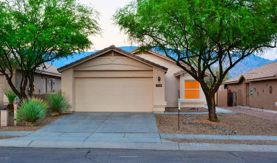 Single Family Home Active Contingent: 13230 N Lost Artifact Lane