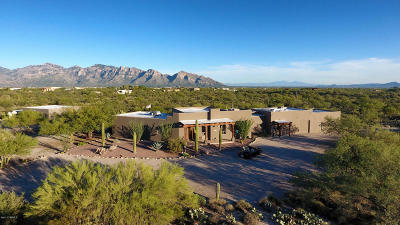 La Cholla Airpark Single Family Home For Sale: 1850 W Kitty Hawk Way