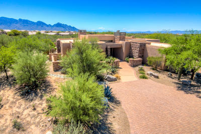 Oro Valley Single Family Home For Sale: 13662 N Old Forest Trail