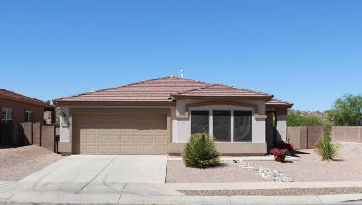 Vail Single Family Home Active Contingent: 11010 S Camino San Clemente