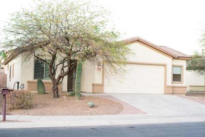 Marana Single Family Home For Sale: 11120 W Prairie Willow Drive